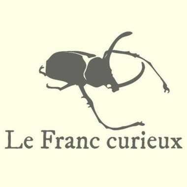 Lucanus fryi (M.)